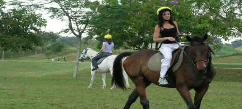 Ride on Horses - Kuala Lumpur Tour Packages