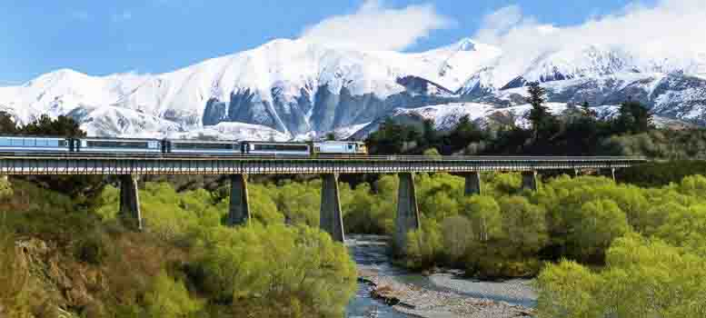 tranz_alpine_train
