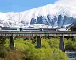 tranz_alpine_train_small