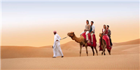 dubai-adventure-camel