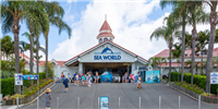 Sea-World-Experience