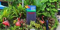 Jurong-bird-park-2